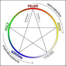 5 elemente nach tcm