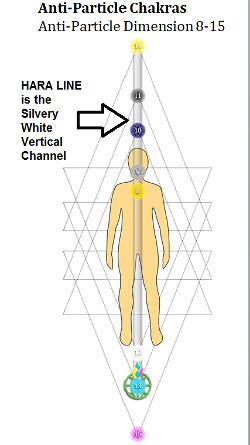 grafik: hara-linie, chakren, nebenchakren und farben